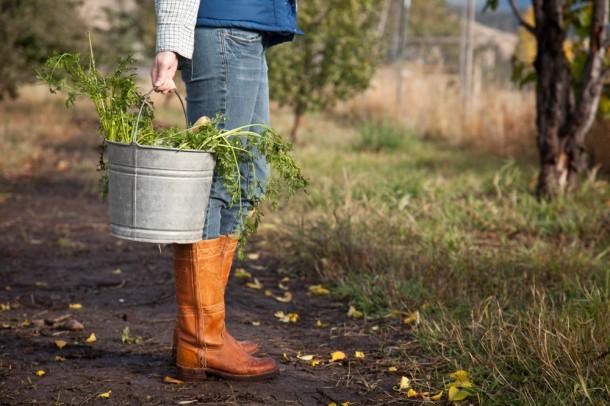Kertészkedj közösségben! 1.rész