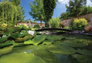 Miért jó a kerti tó?