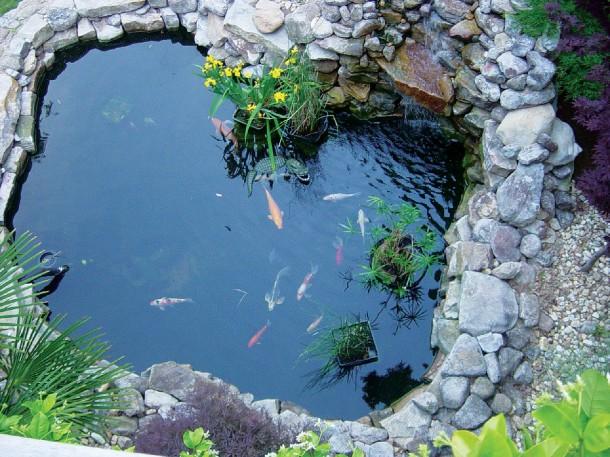 Most érdemes hozzáfognod a kerti tó telepítésének