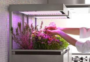 Legyél high-tech kertész!