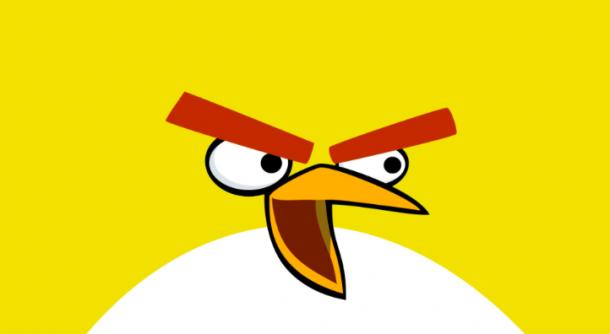 Vigyázzunk a madarakra, ha dühösek, akkor is!