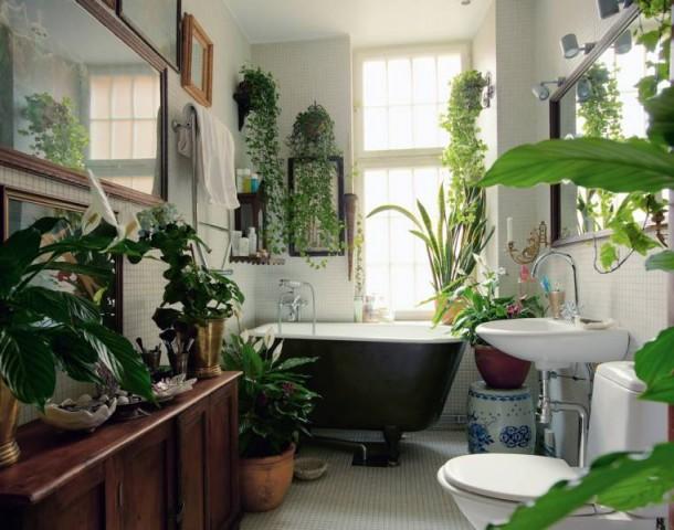 Zöld fürdők