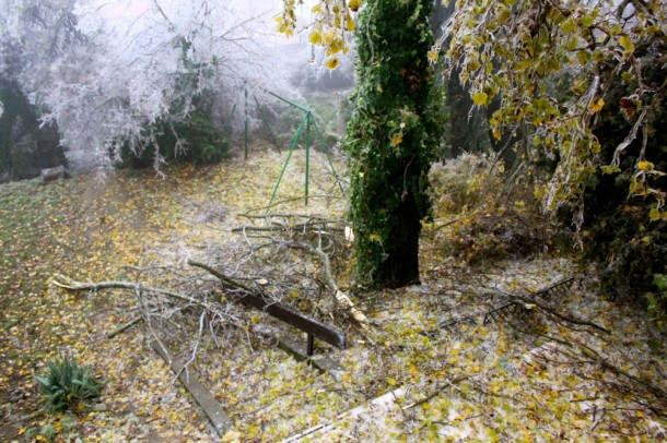 A kert csatatérré vált az ónos eső után