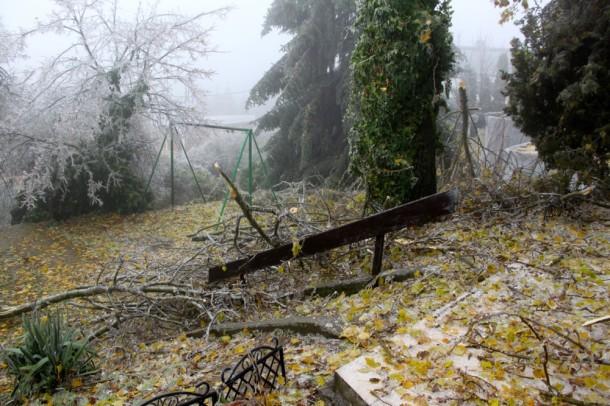 Egy, a kertre is kiterjedő otthonbiztosítás csökkentette volna a bajt