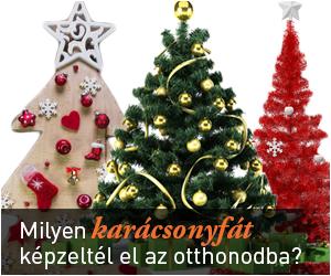 Milyen karácsonyfát képzeltél el az otthonodba?