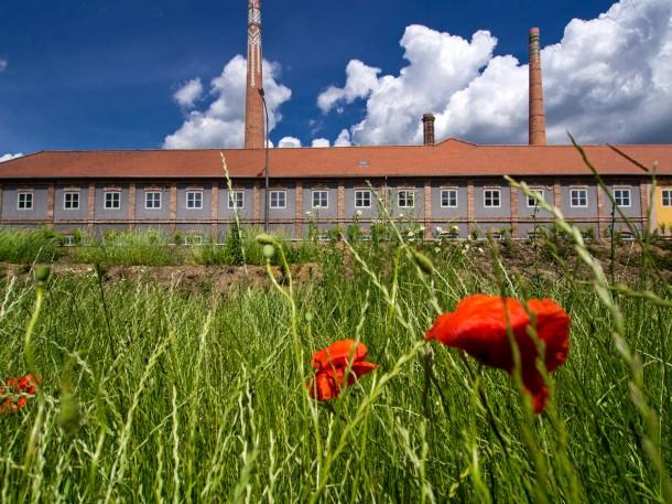 A gyár épülete