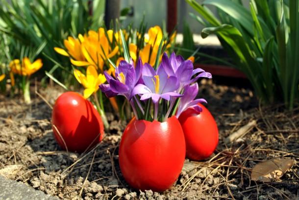 Virág és piros tojás ötvözve