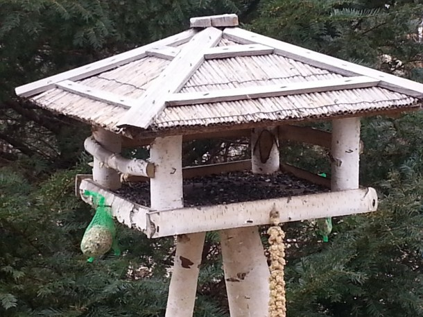 Alakíts ki madárbarát kertet!