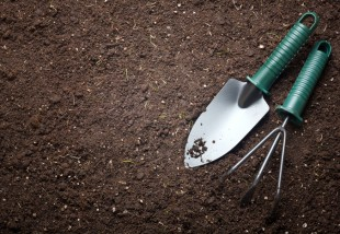 A kert takarítása: körletrendezés