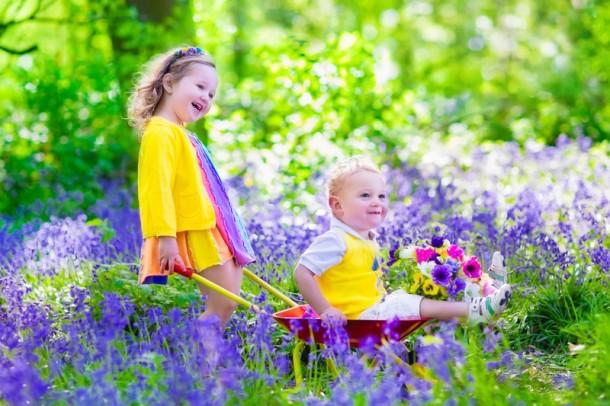 Szép, színes virágok is lehetnek mérgezőek