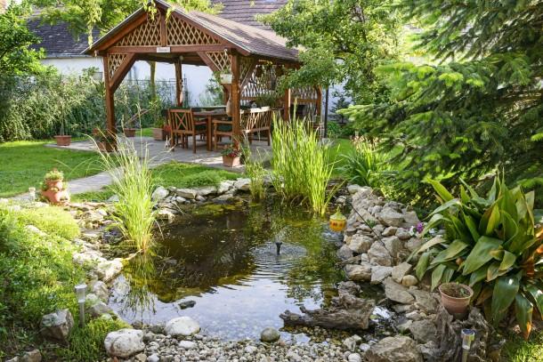 A kerti tó karbantartása