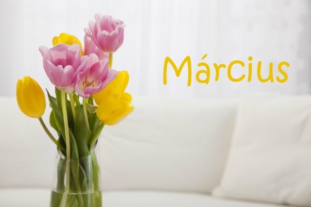 Márciusi feladatlista: ezek a fontos otthonod körüli teendők!