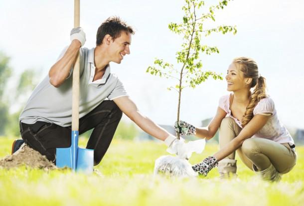 Gyümölcsfaültetési kisokos – 5+1 tipp tavaszi ültetéshez