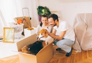7 dolog, amire az első lakásodban szükséged lesz