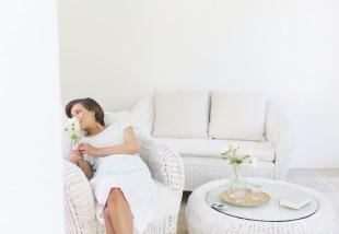 A 10 legjobb lakásba (is) való növény allergiások számára