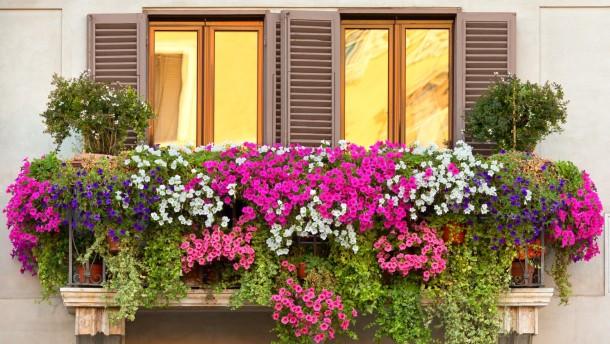 10 sztár lélegzetelállítóan gyönyörű erkélye