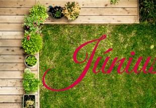 Júniusi feladatlista - ezek az otthonod körüli teendők ebben a hónapban!