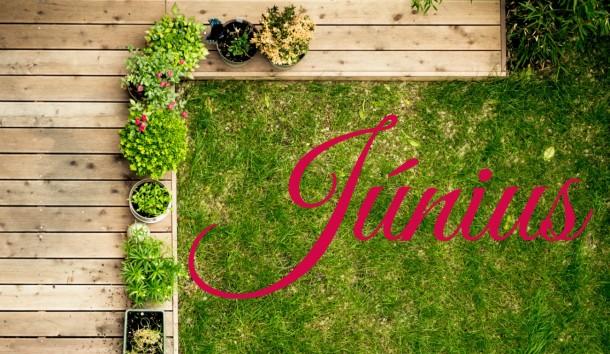 Júniusi feladatlista – ezek az otthonod körüli teendők ebben a hónapban!