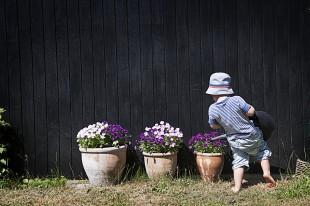 Nyári teendők otthon – 10 dolog, amit meg kéne tenned idén nyáron!