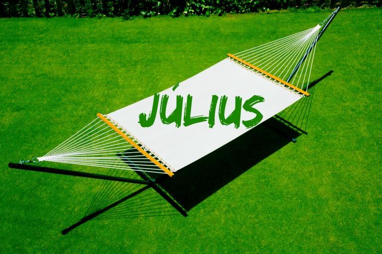 Júliusi feladatlista – Ezek a teendők júliusban otthon és a ház körül!