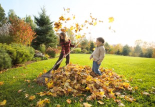 Novemberi feladatlista: Aktuális teendők a házban és a ház körül, amikről ne feledkezz meg!