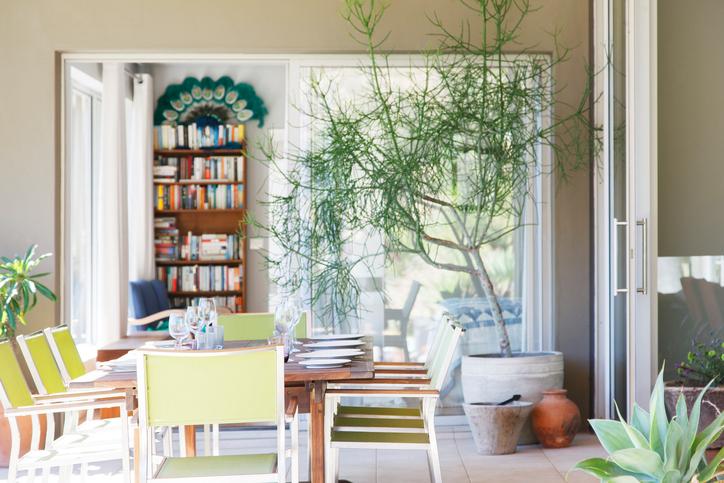 Zöld övezet a lakásban – 10 tipp, hogyan rendezd be a kiskerted ajtón belül