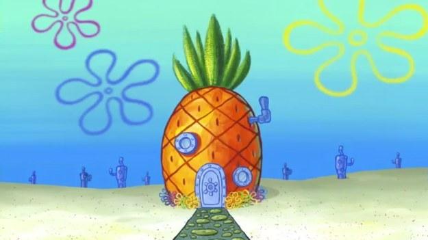 Hát ez hihetetlen! Spongyabob háza életre kelt! Pont olyan, mint a mesében!