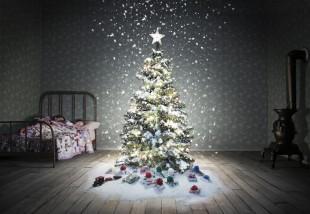 Ha már unod a zöld fenyőt - Altrenatívák karácsonyfára