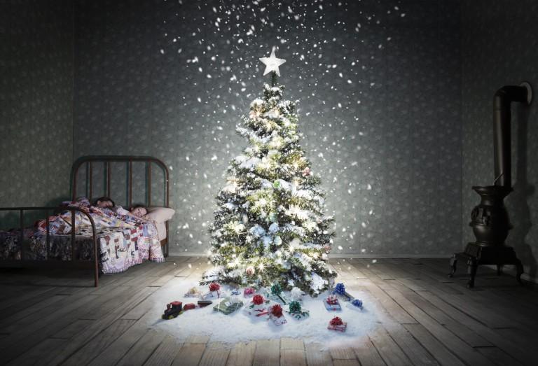 Ha már unod a zöld fenyőt – Altrenatívák karácsonyfára