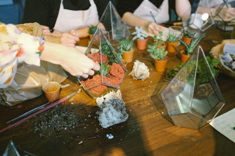 Így készíts trópusi hangulatú növény terráriumot