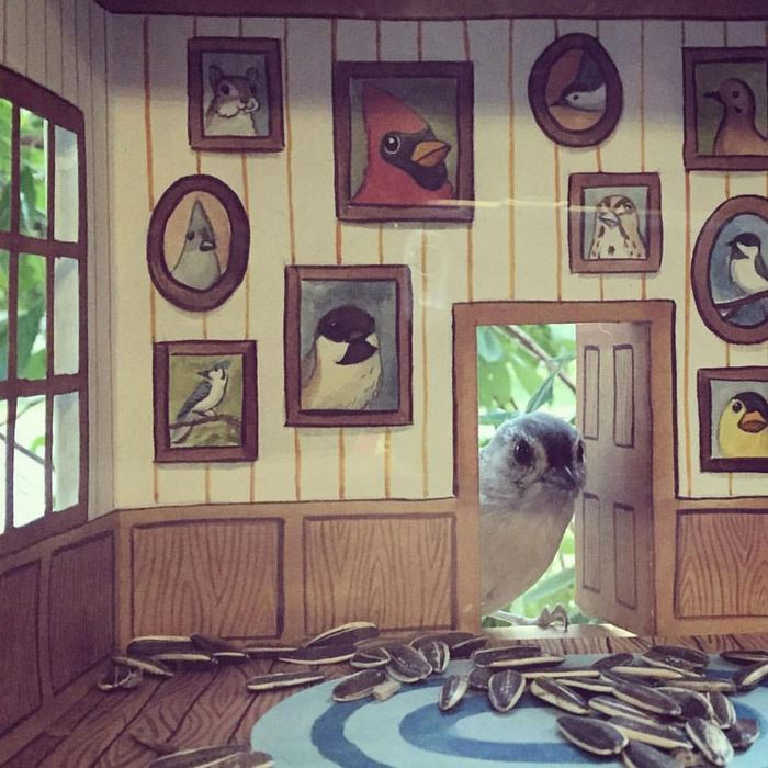 tiny-bird-friends-homes-jada-fitch-3