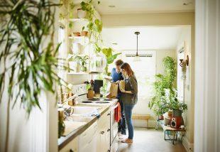 10 megdönthetetlen érv, miért legyen minél több növény az otthonodban