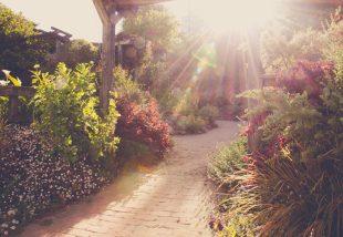 8 szempont a tökéletes kerti út kiválasztásához