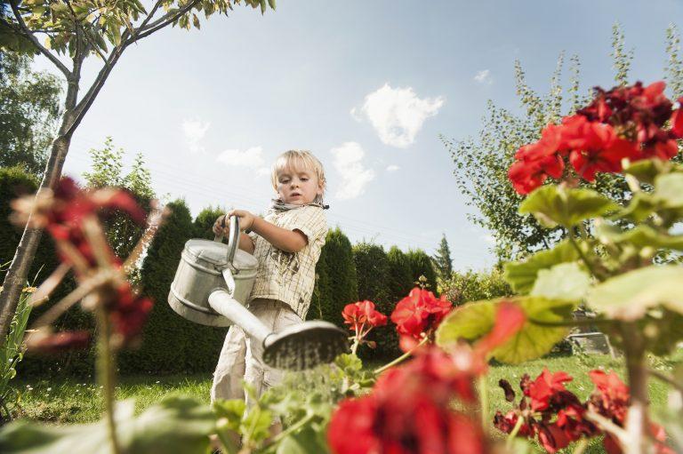5 kerti trükk, amivel sokat spórolhatsz!