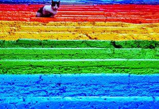 Szivárvány szín lépcsők - ez az új őrület!