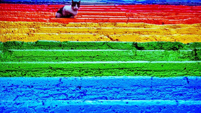 Szivárvány szín lépcsők – ez az új őrület!