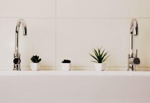Ezért raknak egyre többen virágot a fürdőszobájukba!