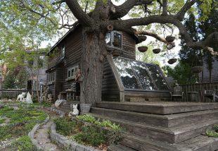 35 évig dekorálta otthonát a művész kövekkel! Ez lett belőle!