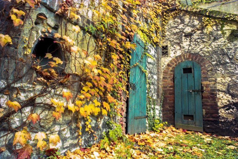 Dekoráld otthonod az ősz kincseivel!!