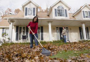 Hogyan kézítsd fel a kerted az őszre-télre?