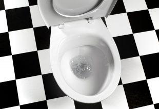 Tények a wc-ről, melyekre tényleg nem gondoltál volna - 1. rész