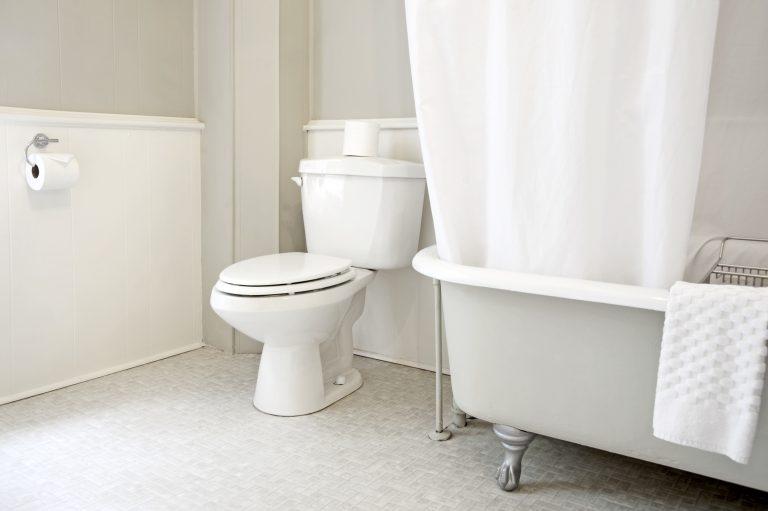 Tények a WC-ről, melyekre tényleg nem gondoltál volna – 2. rész