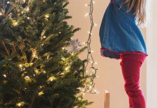 Tedd fel úgy az égősort a karácsonyfára, ahogy csak a profik tudják