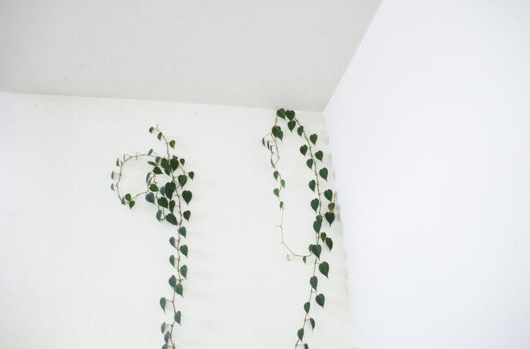 Sarok nem marad üresen! 9 tuti ötlet arra, hogyan hasznád ki a sarkokat a lakásban
