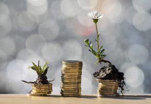 Hogyan dekoráljunk alacsony költségvetésből?