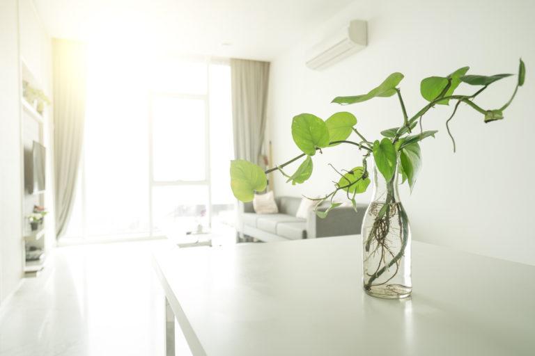 10 dolog, amitől magasabbnak tűnhet otthonod