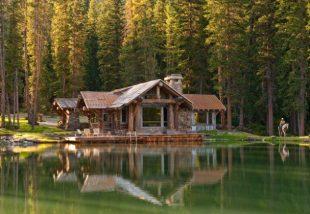 Cabin wood – avagy kényeztető luxus az erdő mélyén