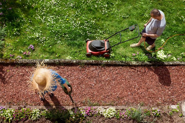5 tipp a hatékony fűnyíráshoz – Így lehet egészséges gyep a kertedben
