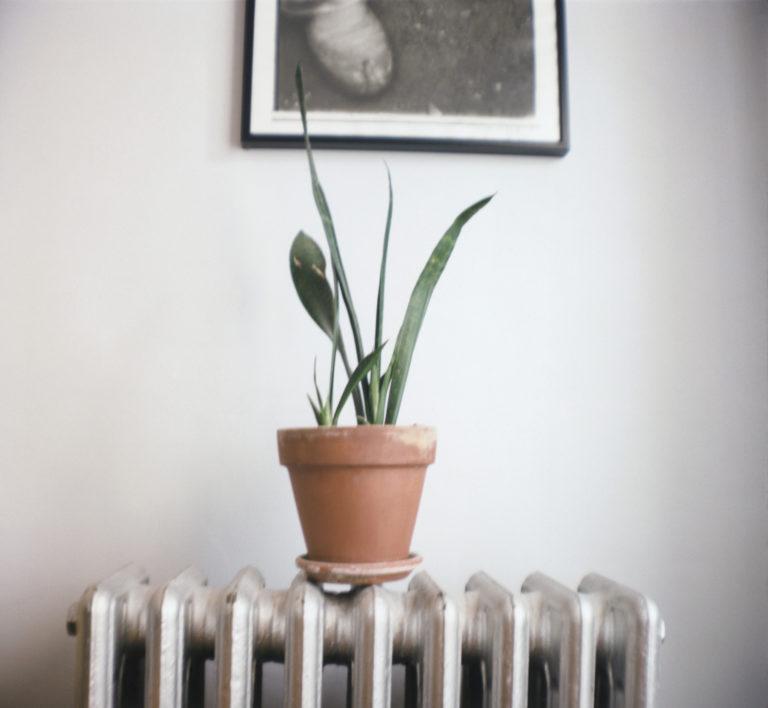 Kopott radiátor? 4 briliáns tipp arra, hogyan rejtsd el szem elől