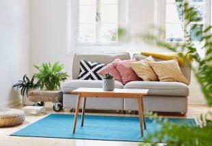 szőnyegtrendek